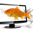 Royalty-Free Stock Photo: Fish TV
