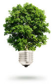 Tree light bulb — Stock Photo