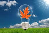 Light bulb with leaf — Stock Photo