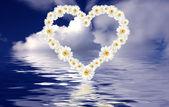 Heart ocean — Foto de Stock