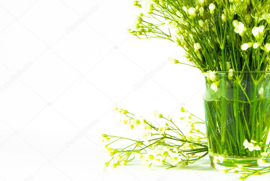 Bunch of flowers in glass vitreous vase isolated over white — Stock Photo #5908510