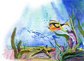 Ryby morskie i rozgwiazdy — Zdjęcie stockowe