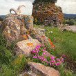 Stock Photo: Nuraghe tower sardiniItaly