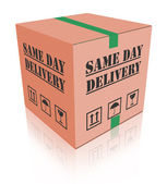 Same day delivery carboard box package — Stock Photo
