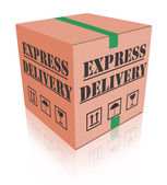 Express delivery carboard box package — Stock Photo