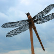 Carved Dragonfly — Stock Photo
