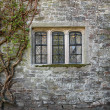 Old Window — Stock Photo #5957558
