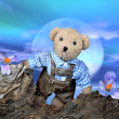 Teddy on tour - Foto Stock