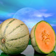 Melon at sunset — Stock Photo