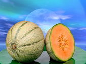 Melon at sunset — Stock Photo