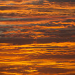 Orange and gold sky — Stockfoto