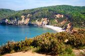 Landskap med kusten — Stockfoto