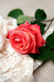 Rose with water drops and vintage lace — Stock Photo