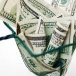 Dollars in fishing net — Stock Photo #6080029