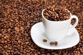 White cup filled with coffee beans — Stock Photo
