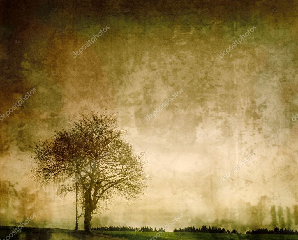 Фотообои Старинные сельской местности