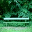 Park bench — Stock Photo #5904269
