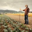Agriculture — Stock Photo #5949851