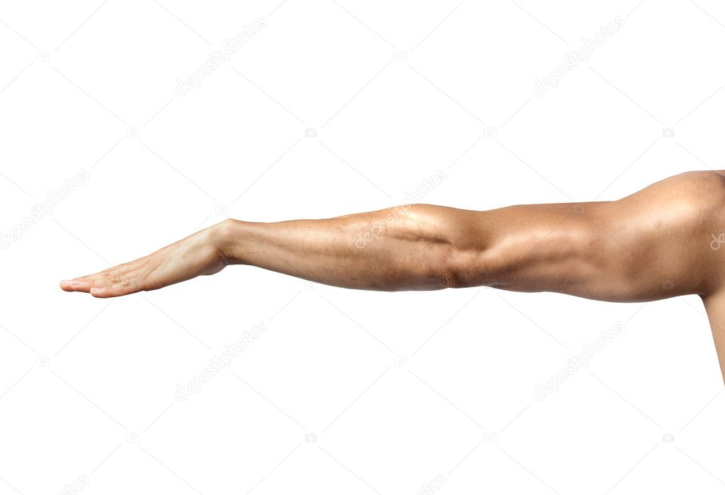 Closeup of a muscular man's arm — Stock Photo #6308241