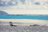 Paradise seaside — Stock Photo