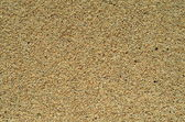 Background Texture Of Wet Sand — Stock Photo