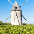 Windmill with vineyard near Blaignan, Bordeaux Region, France — Zdjęcie stockowe
