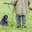Hunting dog with hunter — Stock Photo