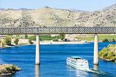 Pocinho, Douro Valley — Stock Photo