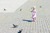 Little girl chasing pigeons — Stock Photo