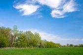 Bonito paisaje de estepa — Foto de Stock