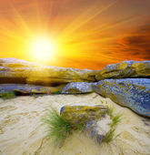 Evening landscape with stones in sand — Foto Stock