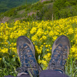 Stock Photo: Hikers boots on mountain meadow