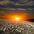 Sunset in stones desert — Stock Photo