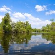 River scene on summer time — Stock Photo