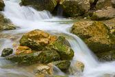 Wet stones in stream — Stock Photo