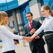 Stok fotoğraf: Business shaking hands