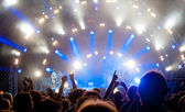 Crowd of fans at a concert — Foto Stock