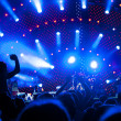 Crowd of fans at a concert — Stock Photo #5867314