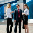 Business meeting — Stock Photo #6127205