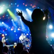 Crowd of fans at a concert — Stock Photo #6546007