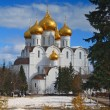uspensky cathedral — Stock Photo #6600400
