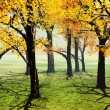 Autumn scene - Stock Photo