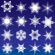 Snowflakes — Stock Vector #6690025