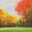Wonderful autumn scenery - Stock Photo