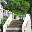 Stairs in verdure — Stock Photo