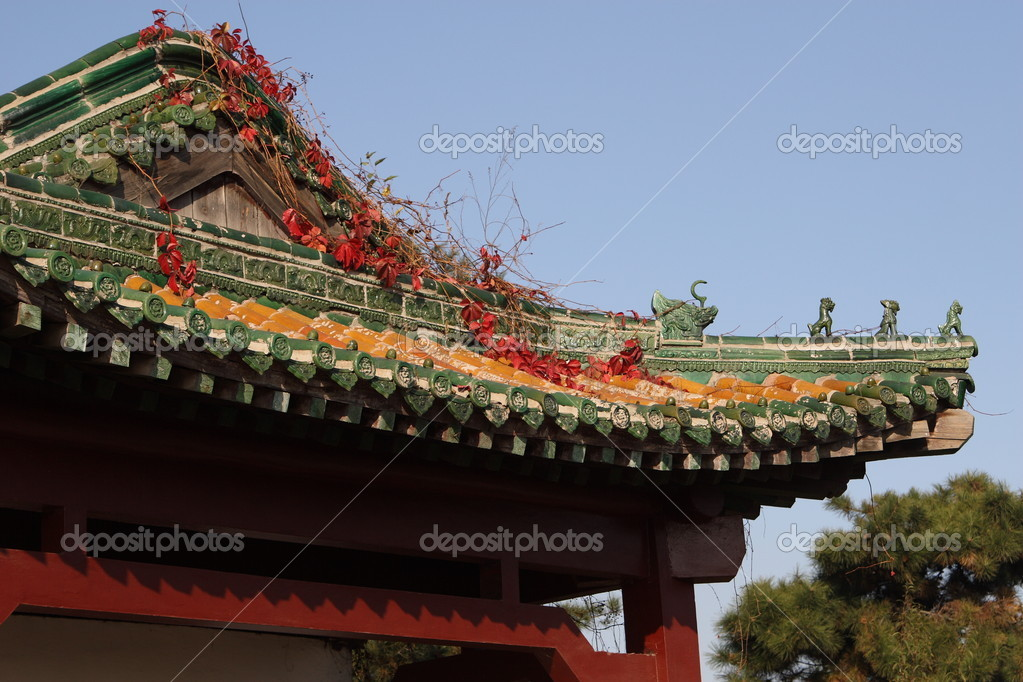 China temple roof  Stock Photo #6610876