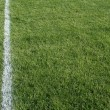 Green Grass and White Line — Foto de Stock