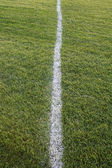 White Line, Green Field — Stock Photo