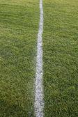 Campo de línea blanca, verde — Foto de Stock