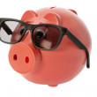 Piggy Bank with Sunglasses — Stock Photo